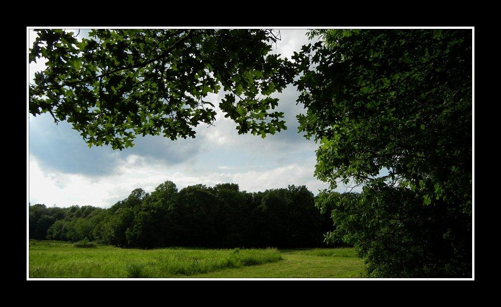 Mountain Farm Pond County Park