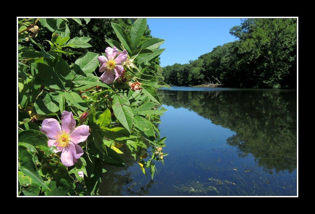 Morris Canal Saxton Falls