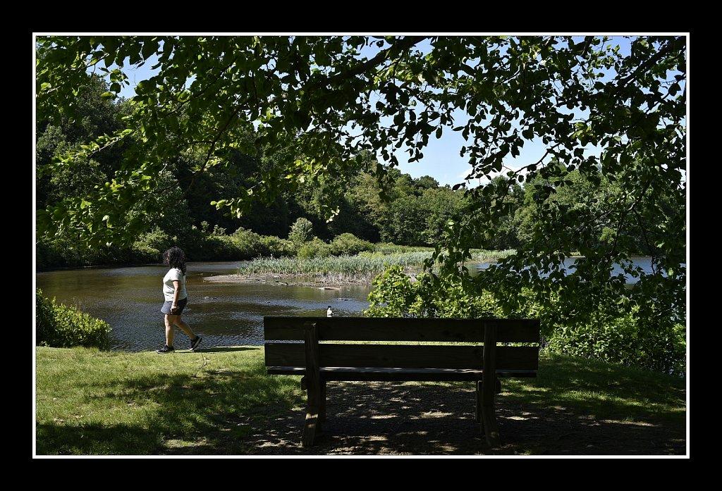 Views at Heddon County Park