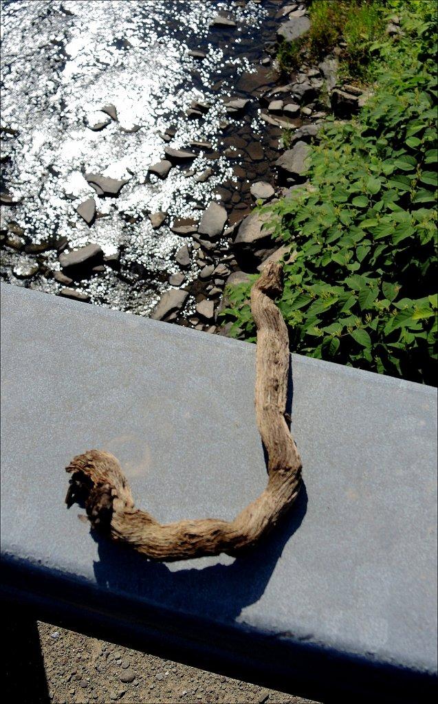 Jeanne's Driftwood J