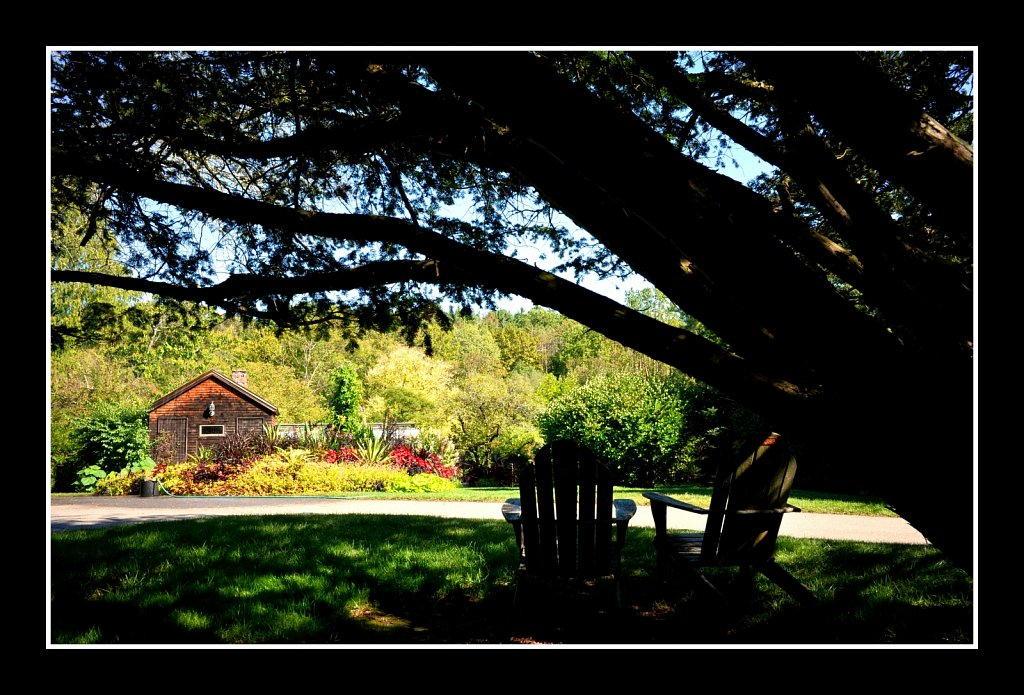 Willowwood Arboretum